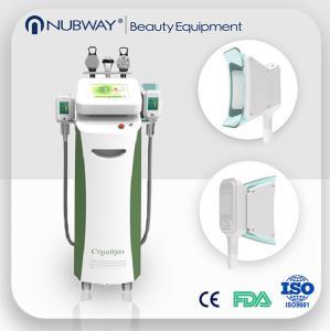 Quality Salon use Cryolipolysis Fat Freeze Equipment cryotherapy cryolipolysis machine for sale wholesale