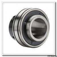 China NTN HK2520D NTN Bearing on sale