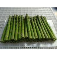 China frozen asparagus on sale