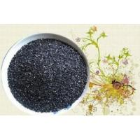 Quality Coal base Granular activated carbon for water treatment wholesale