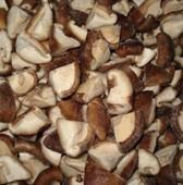 Quality Frozen Mushroom Slice wholesale