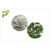 Quality Anti Cancer Ursolic Acid Powder , CAS 77 52 1 Persimmon Leaf Extract Dietary Supplement wholesale