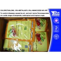 Quality Systemic Fungicide Chlorothalonil 18% + Metalaxyl 8% + Mancozeb 54% WP wholesale