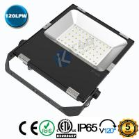 Quality Die Casting Aluminum Shell 50W 120LM/W SMD LED Floodlight With  SMD3030 Chips wholesale