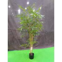 Quality Elegant Artificial Garden Plants Bamboo Tree Easy To Clean For Flower Arrangement wholesale