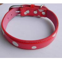 Quality Colourful Dog Collar wholesale
