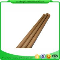 Quality Heavy Duty Bamboo Garden Stakes , Round Bamboo Stakes For Garden wholesale