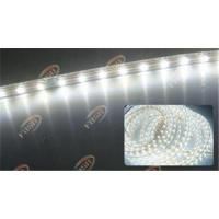 Quality Waterproof White Energy Saving Flexible 5050 Strip Light Back Lighting for Signage Letters wholesale