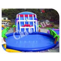 Quality Giant Inflatable Water Slide, Inflatable Slides with Pool wholesale