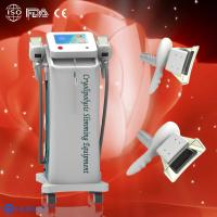 Quality Two Cryolipolysis handles Cryolipolysis fat freeze slimming machine to do fat reduction wholesale