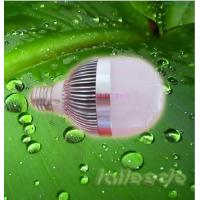 Quality 8000K 6w Gu10  Led Light Replacement Bulbs with with Protection Degree IP50   wholesale