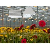 Quality Easy Installation Plant Grow Lights 630W Low Frequency Ballasts With Soft Start wholesale
