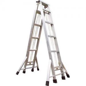 Quality Aluminium  2-section Tensile ladder wholesale