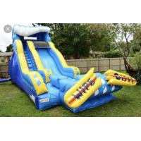 Quality Giant Blow Up Water Slide / Children