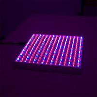 Buy cheap Indoor Plant LED Tube Grow Lights High Power For Horticulture / Greenhouse from wholesalers