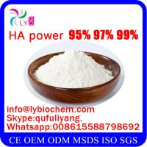 Quality Food Grade Sodium Hyaluronate CAS 9004-61-9 wholesale