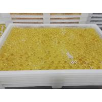 Quality Food Grade Plastic / Metal Tray And Trolly For Drying Capsule Candy wholesale