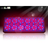 Quality Apollo 12 Professional LED Plant Grow Light for Garden Flower Blooming wholesale