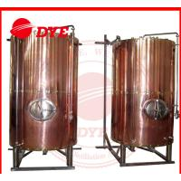 Quality DYE Semi-Automatic Mini Bright Beer Tank For Brewery 1 - 3 Layers wholesale