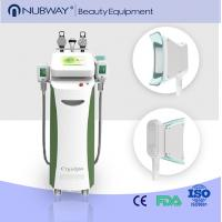 China Cryo fat freezing machine with 2 Silicone handpieces best anti cellulite machine on sale