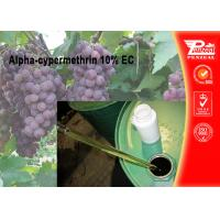 Quality Alpha-cypermethrin 10% EC Pest control insecticides 67375-30-8 wholesale