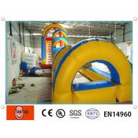 Quality Colorful Tunnel Inflatable Dry Slides / pool slides for Children Amusement Park wholesale