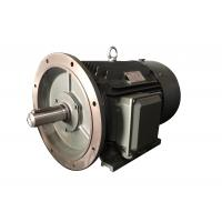 Quality High Speed 6 Pole Low Voltage Electric Motor Three Phase With IEC Standard IE3 wholesale