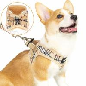 Quality Plaid Cute Adjustable Puppy Harness And Leash Set Small Dog Vest Escape Proof wholesale