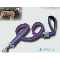 Quality Flashing PET Leash HFQ-850 wholesale
