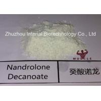 Quality Injectable Nandrolone Decanoate Steroid White Powder Deca for Muscle Gaining with Safe Shipping wholesale