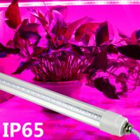 Quality Professional Blue / Red LED Tube Grow Lights For Plant Growth , 18W Power wholesale