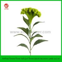 """China 32"""" Decorative Artificial Flower Cockscomb Green on sale"""