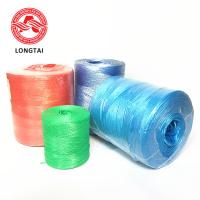 Quality 2mm Agriculture UV Treated Hay Baling Twine with ISO Certificate High Tenacity PP baler twine wholesale