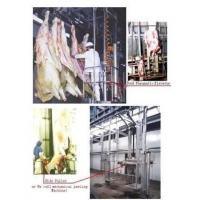 China Cattle Slaughter House And Meat Processing Equipment on sale