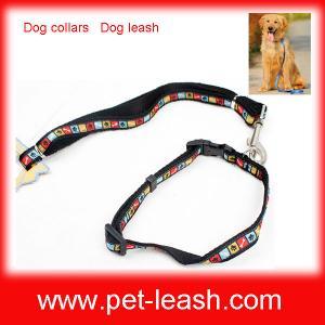 China Dog collars Dog leash QT-0080 on sale