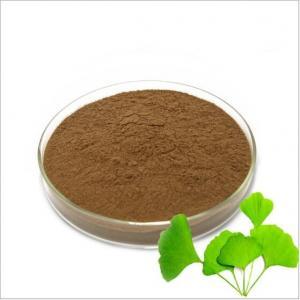 China Factory Supply Ginkgo Biloba Extract CP Ginkgo Biloba Extract Powder on sale