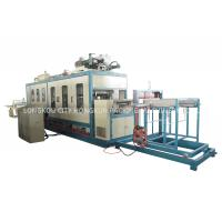 Quality Three Phase 380V 50Hz Fast Food Box Machine / Food Container Production Line wholesale