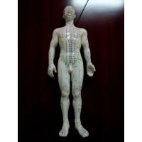 Cheap Activate Nerve Electric Acupuncture Machine , Weight Loss Acupuncture Stimulator Machine for sale