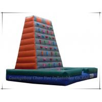 Quality Great Fun Happy Land Inflatable Climbing for Children (CY-M2011) wholesale
