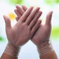 Quality Japan food service Powder Free Disposable Vinyl Gloves  PVC gloves for food handling wholesale