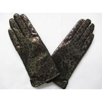 Quality 2013 Hot Gloves Fashion Gloves Leather Gloves (HBF048) wholesale