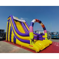 China Playground Jumping Bouncer Giant Bouncy Castle Inflatable Slide on sale