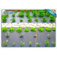 Quality Eco-friendly 30gsm Black Color Non woven weed control fabric For Vegetables wholesale