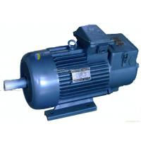 Quality Standard Squirrel Cage Crane 3 Phase Asynchronous Motor , IP54 YZR Series wholesale