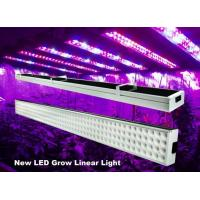 Quality 4 Feet Linear Hydroponic Led Grow Lights Bar 120w For Greenhouse , 50Hz-60Hz wholesale