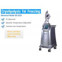 Cheap Body Slimming / Shaping Cryolipolysis Fat Freezing Machine With Intelligent Temperature Control for sale
