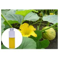 Quality Pumpkin Seed Natural Plant Extract Oil Liquid Improving Males' Sex Function wholesale