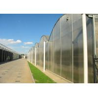 China Flower Large Polycarbonate Greenhouse Strong Thermal Insulation Sides Ventilation on sale
