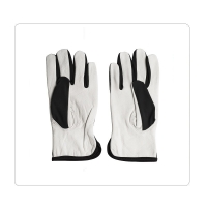 China Polyester Back No Lining Sheepskin Leather Gloves on sale