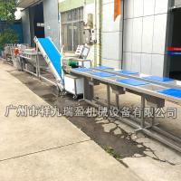 Quality Stainless Steel Salad Production Line  / Industrial Vegetable Inspecting Processing Line wholesale